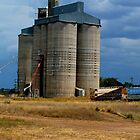 Silos on Western Plains   Qld Australia by sandysartstudio