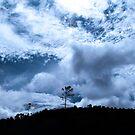 Sky, Blue Sky by mariamejia2