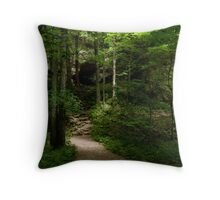 Entrance To Nowhere Throw Pillow