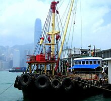 Afloat in Hong Kong by Fraida Gutovich