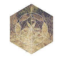 Geometric Trail Photographic Print
