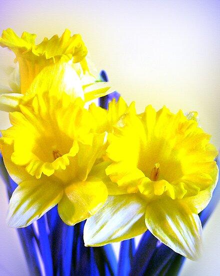 Daffodils blue yellow watercolor  by Irisangel