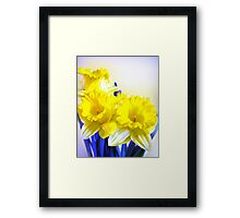 Daffodils blue yellow watercolor  Framed Print