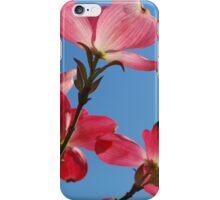Pink Flower Blossom 2 iPhone Case/Skin