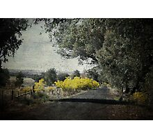 A Country Road Photographic Print