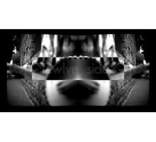 Twelve Sides Photographic Print