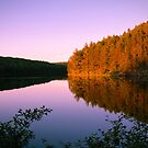 Before the dusk, Algonquin Park, Canada by Tamara Travers