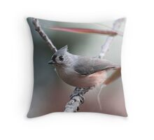 Tufted titmouse on an autumn afternoon Throw Pillow