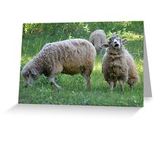 I HATE SPINICH Greeting Card