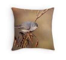 Blue-grey Gnatcatcher Throw Pillow