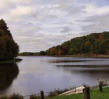 A Scenic View of the Lake by vigor