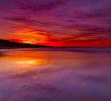 """Echoing The Splendor"" by Phil Thomson IPA"