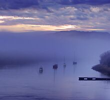 Early Morning Fog - Tasmania by Ben Swanson