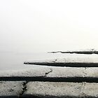zero visibility  lake paringa south westland  nz by rina  thompson