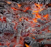 Burning Embers by Alex Levin