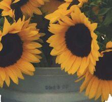 Sunflowers in Bucket Sticker