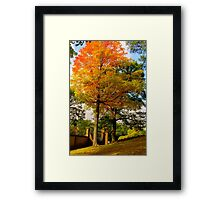 Autumn, welcome ! Framed Print
