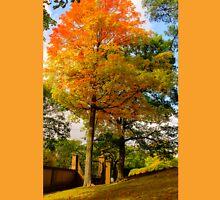 Autumn, welcome ! Unisex T-Shirt