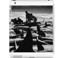 Hamelin bay Pilot Whale stranding iPad Case/Skin