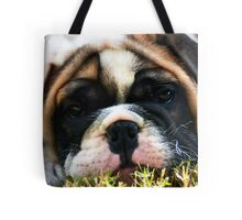 ~Bent Whiskers~ Tote Bag
