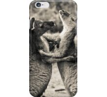 Fighting Kangaroo's, Perth hill's, Western Australia iPhone Case/Skin