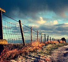Frosty road by KalonaCreations