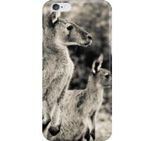 kanagroo's Perth Hill's, Western Australia iPhone Case/Skin