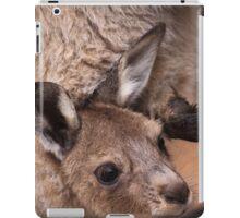 Mother and Joey Kangaroo, Perth hill's, Western Australia iPad Case/Skin
