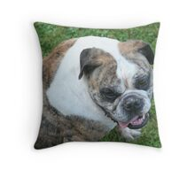 Woolly Bully Throw Pillow