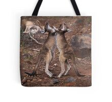 kangaroo's fighting, Perth hill's, Western Australia Tote Bag