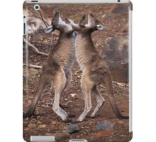 kangaroo's fighting, Perth hill's, Western Australia iPad Case/Skin