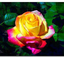 Point Defiance Rose, Tacoma, Washington by Dana Joe Hutchinson
