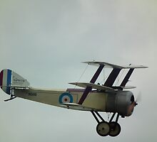 Sopwith LC-1T Triplane replica by mike  jordan.