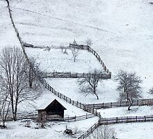 Romanian Winter by Calin Ilea