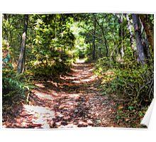 Blue Ridge Trail Poster