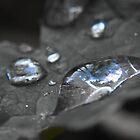 Rain drops by J.B. Johnston