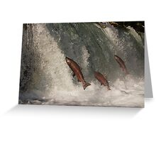 A Trio of Jumping Salmon Greeting Card