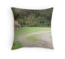 What Have We Here (for Alissa Brunskill) Throw Pillow