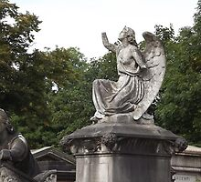 Norwood cemetary: Sculpture: Angel, with broken arms -(220811c)- Digital photo  by paulramnora