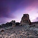 Purple Haze by Rodney Trenchard