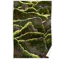 mossy rockscape Poster