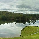 Tarn Hows,Cumbria by VoluntaryRanger