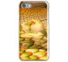 Summer Stones iPhone Case/Skin