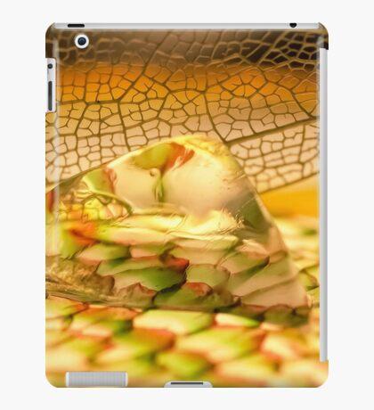 Summer Stones iPad Case/Skin