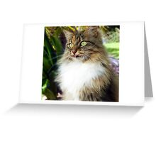 *DAISY* See What I Can Do?, Now You Try..... Greeting Card