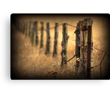 Following the Fence Canvas Print