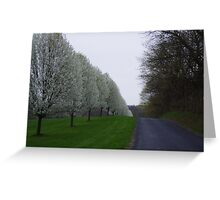 Country Row Greeting Card