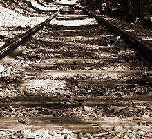 Lonely Rails by Tom Gotzy