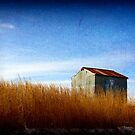 The Shack by amandameans