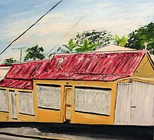 Spring Hill Terraced Houses  by gillsart